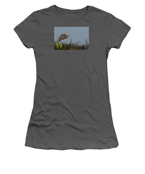 Tri-colored Heron In The Morning Light Women's T-Shirt (Athletic Fit)