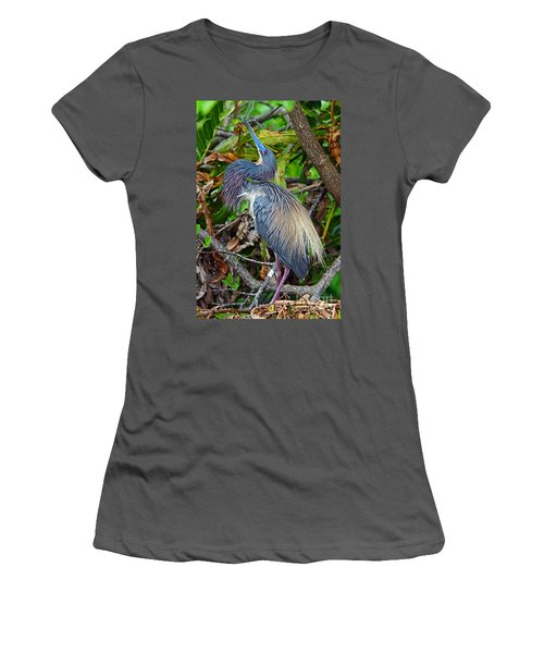 Women's T-Shirt (Junior Cut) featuring the photograph Tricolor Breeding Display by Larry Nieland