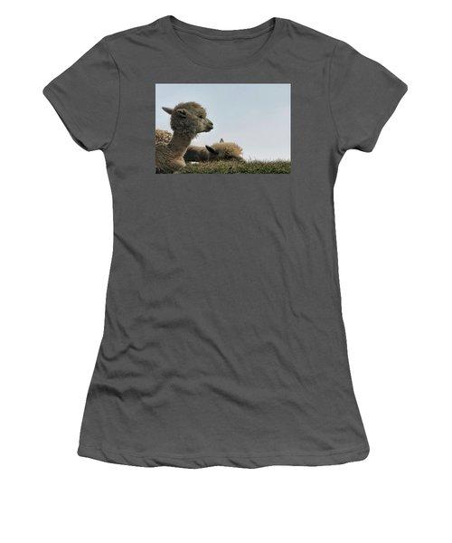 Two Alpaca Women's T-Shirt (Athletic Fit)