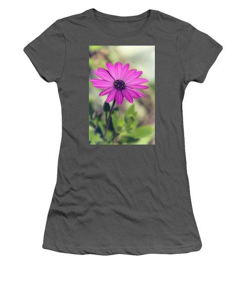 Women's T-Shirt (Junior Cut) featuring the photograph Vintage Purple Daisy  by Saija Lehtonen