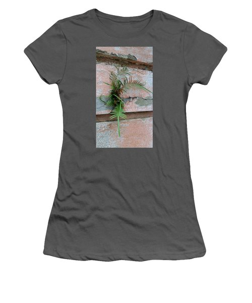 Wall Fern Women's T-Shirt (Athletic Fit)