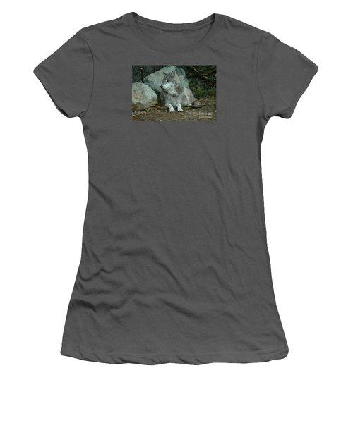 Watchful Wolf Women's T-Shirt (Junior Cut) by Sandra Updyke