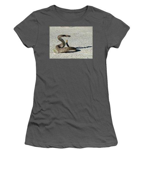 Western Diamondback Rattlesnake Women's T-Shirt (Junior Cut) by Skeeze
