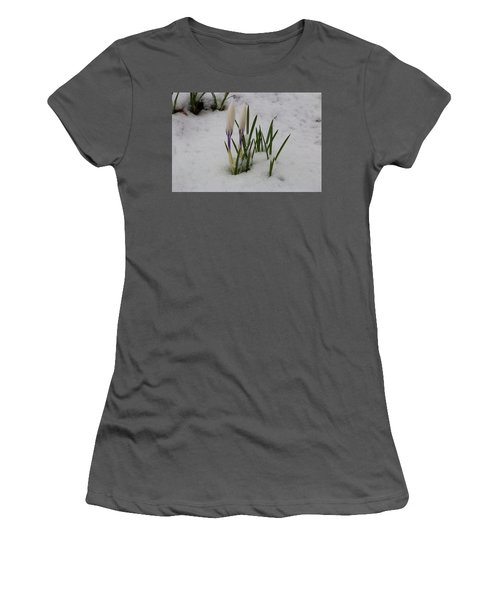 White Crocus In Snow Women's T-Shirt (Athletic Fit)