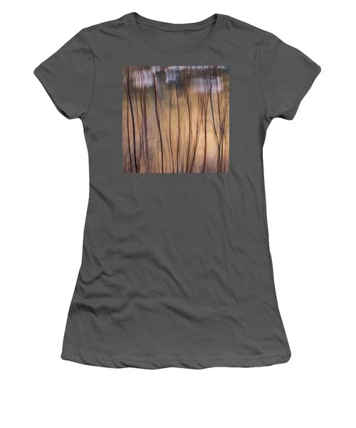 Willows In Winter Women's T-Shirt (Athletic Fit)