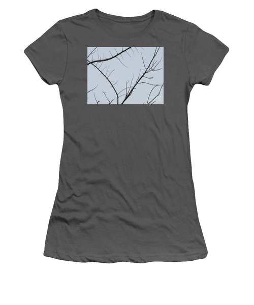 Winter Branches Women's T-Shirt (Athletic Fit)
