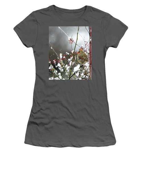 Winter Cardinal Women's T-Shirt (Junior Cut) by Gary Wightman