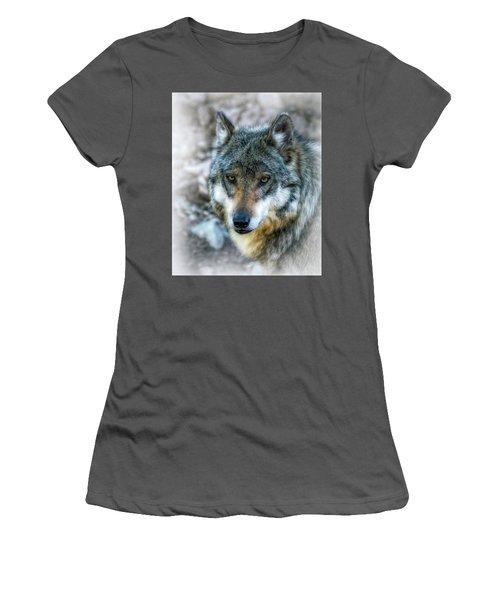 Wolf Gaze Women's T-Shirt (Junior Cut) by Elaine Malott