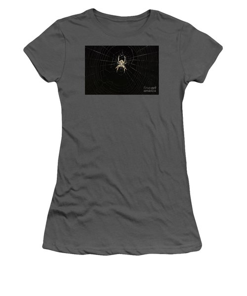 Wolf Spider And Web Women's T-Shirt (Junior Cut) by Mark McReynolds