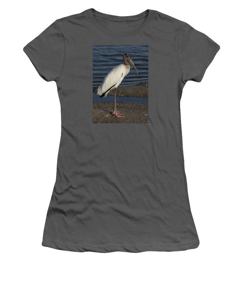 Wood Stork In The Final Light Of Day Women's T-Shirt (Athletic Fit)