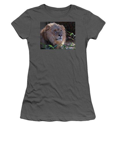 Young Lion King Women's T-Shirt (Junior Cut) by Ronda Ryan