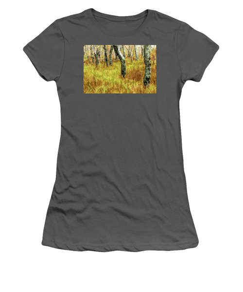 Autumn At Craggy Gardens Ap Women's T-Shirt (Athletic Fit)
