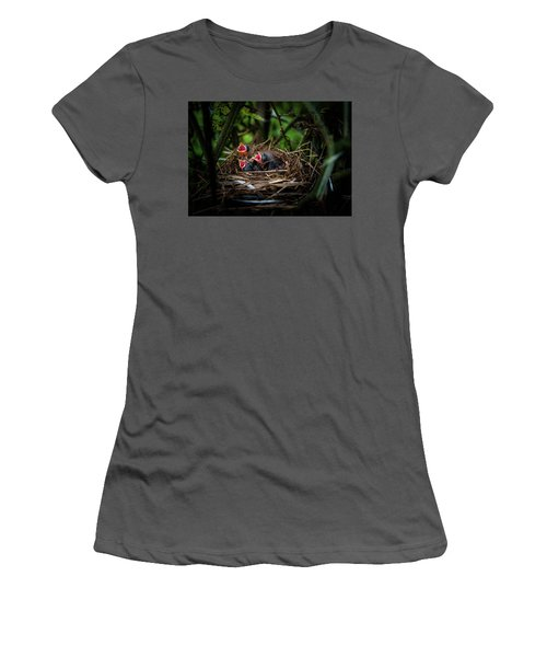 Baby Birds Women's T-Shirt (Athletic Fit)