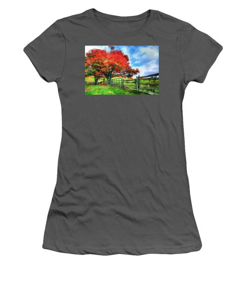 The Beauty Of A Blue Ridge Autumnl Ap Women's T-Shirt (Athletic Fit)