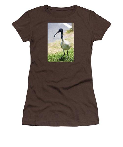 Carpark Ibis Women's T-Shirt (Junior Cut) by Jorgo Photography - Wall Art Gallery