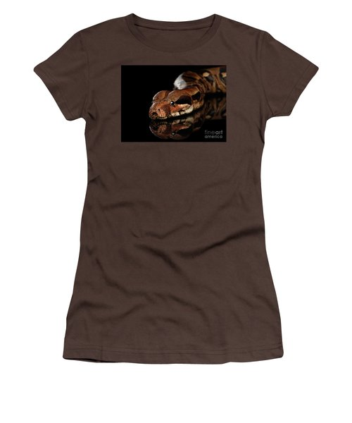 The Boa Constrictors, Isolated On Black Background Women's T-Shirt (Junior Cut) by Sergey Taran