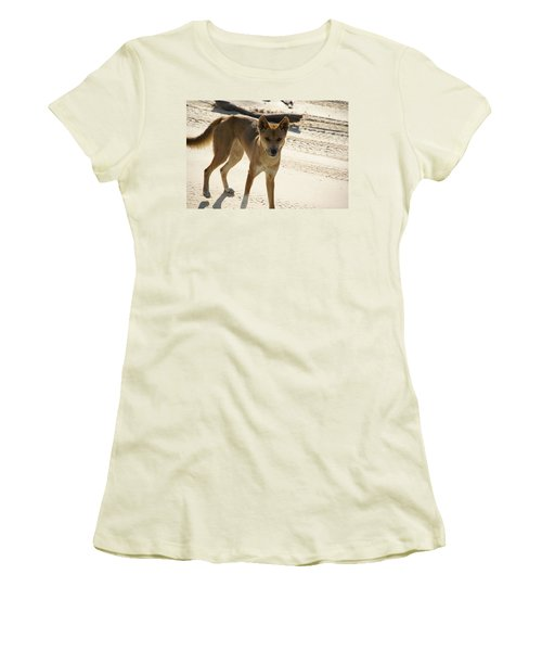 Dingo Women's T-Shirt (Athletic Fit)