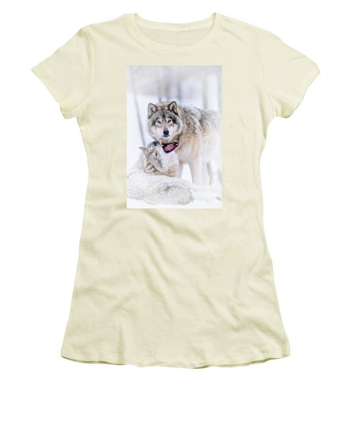 Timber Wolf Pictures Women's T-Shirt (Junior Cut) by Michael Cummings