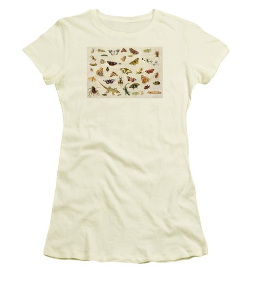 A Study Of Insects Women's T-Shirt (Junior Cut) by Jan Van Kessel