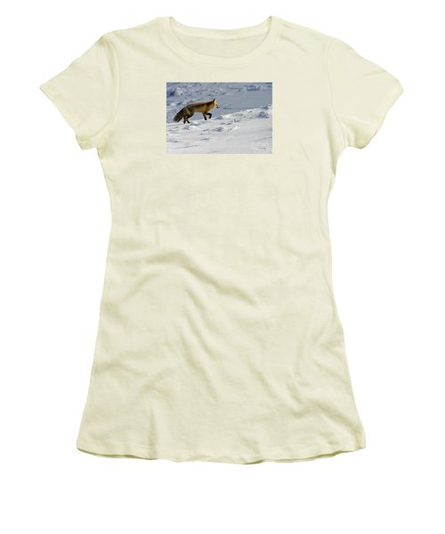 Against The Glare-signed Women's T-Shirt (Junior Cut) by J L Woody Wooden