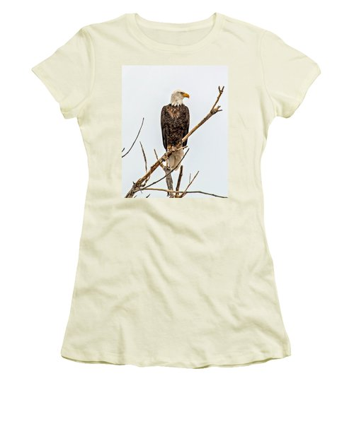 Bald Eagle On A Branch Women's T-Shirt (Athletic Fit)