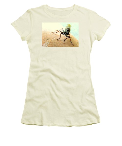 Bearded Robber Fly Women's T-Shirt (Athletic Fit)