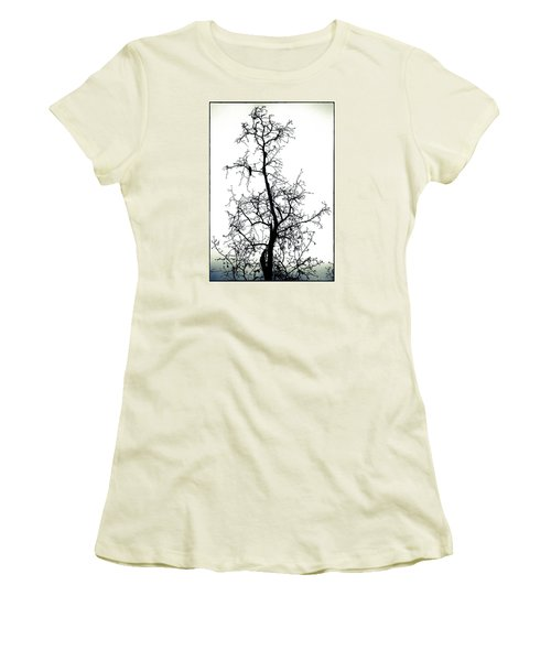 Bird In The Branches Women's T-Shirt (Athletic Fit)