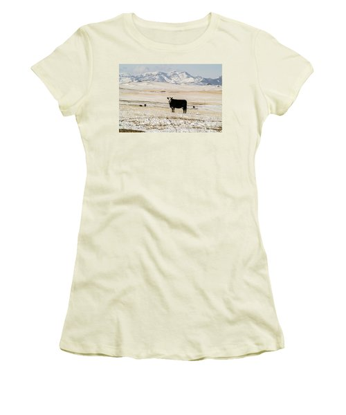 Women's T-Shirt (Athletic Fit) featuring the photograph Black Baldy Cows by Sue Smith
