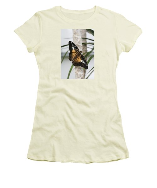 Brown Clipper Butterfly #2 Women's T-Shirt (Junior Cut) by Judy Whitton