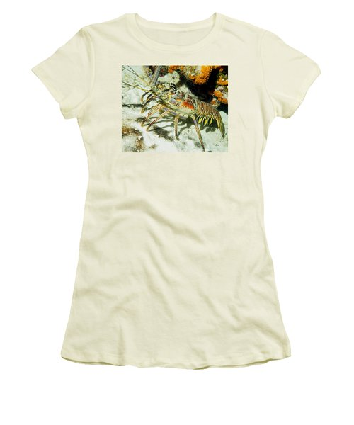 Women's T-Shirt (Junior Cut) featuring the photograph Caribbean Spiny Reef Lobster  by Amy McDaniel