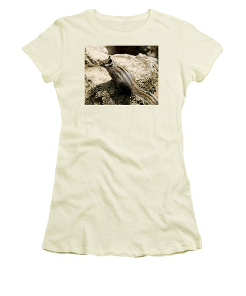 Chipmunk On A Rock Women's T-Shirt (Junior Cut) by Belinda Greb