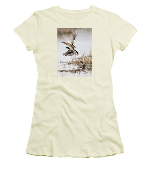Crowded Flight Pattern Women's T-Shirt (Athletic Fit)