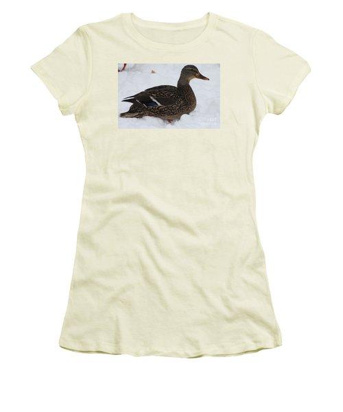 Duck Playing In The Snow Women's T-Shirt (Junior Cut) by John Telfer