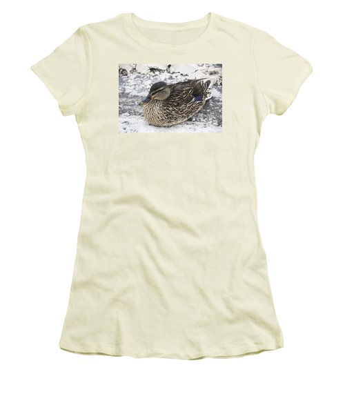 Duck Setting On A Winter Road Women's T-Shirt (Athletic Fit)
