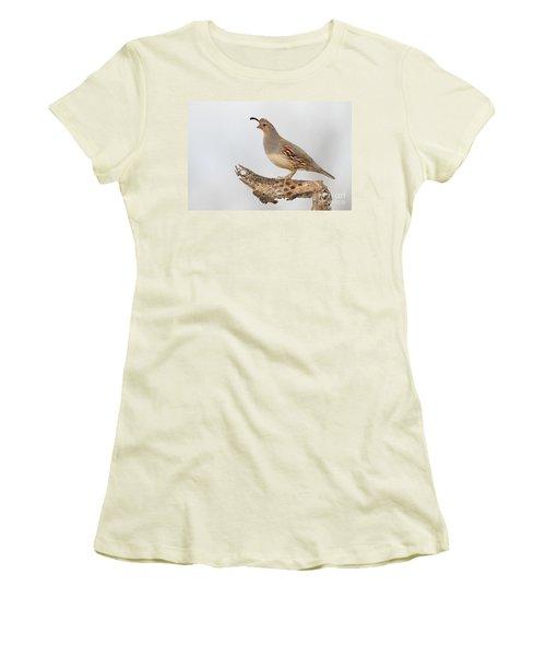 Female Gambel's Quail Women's T-Shirt (Athletic Fit)