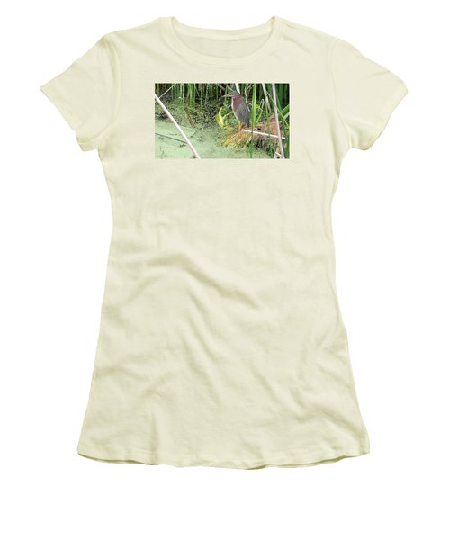 Women's T-Shirt (Junior Cut) featuring the pyrography Green Heron by Ron Davidson