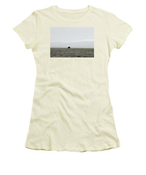Ngorongoro Crater Women's T-Shirt (Junior Cut) by Shaun Higson