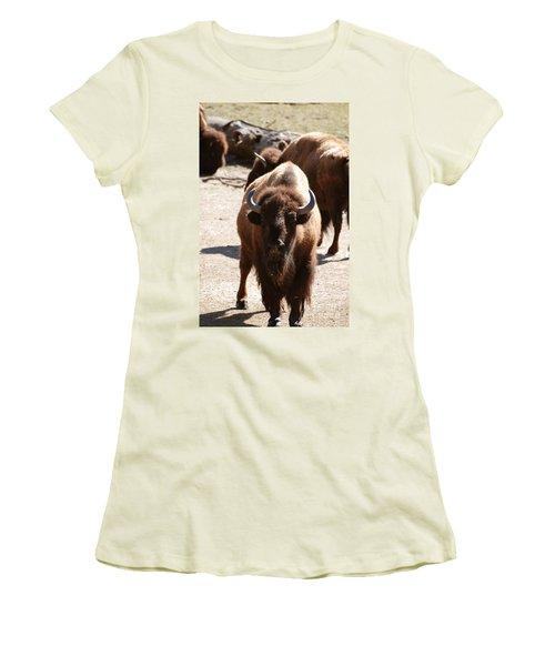 North American Bison Women's T-Shirt (Junior Cut) by DejaVu Designs
