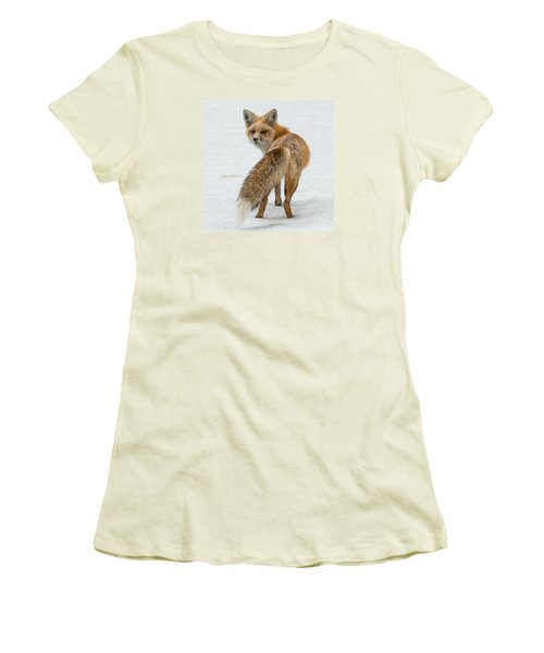 Red Fox Of Silver Gate Women's T-Shirt (Junior Cut) by Yeates Photography