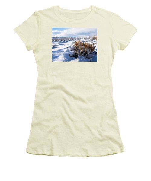 Sand Wash Basin In The Winter Women's T-Shirt (Junior Cut) by Nadja Rider