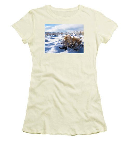 Sand Wash Basin In The Winter Women's T-Shirt (Athletic Fit)