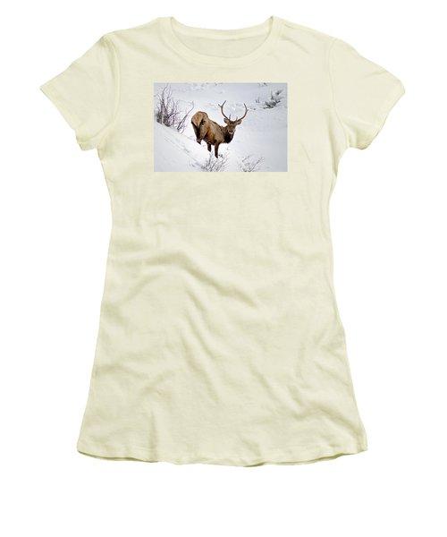 Women's T-Shirt (Junior Cut) featuring the photograph Surviving by Jeremy Rhoades