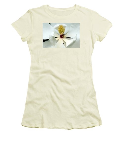 The Southern Magnolia Women's T-Shirt (Junior Cut) by Kim Pate