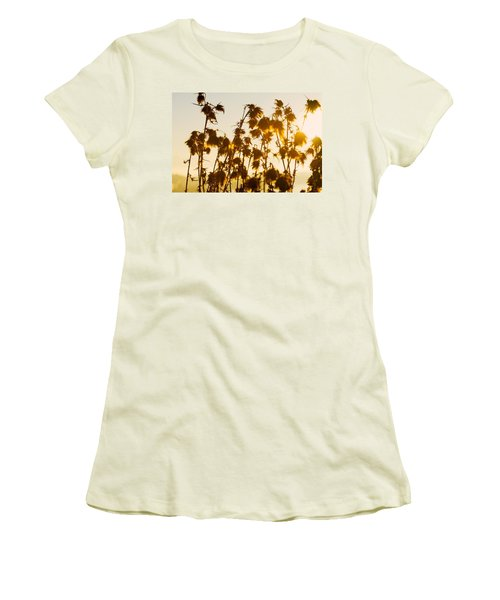 Women's T-Shirt (Junior Cut) featuring the photograph Thistles In The Sunset by Chevy Fleet