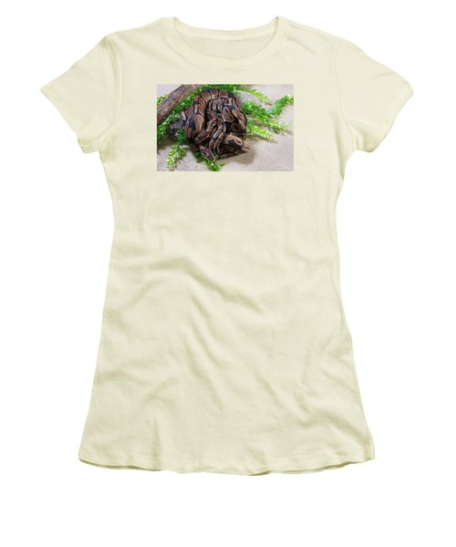 Two Burmese Pythons Python Bivittatus Women's T-Shirt (Athletic Fit)
