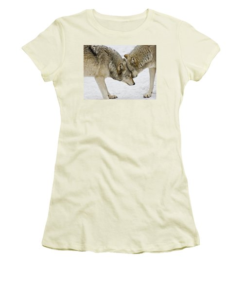 Two Wolves In  A Staredown Women's T-Shirt (Junior Cut) by Gary Slawsky
