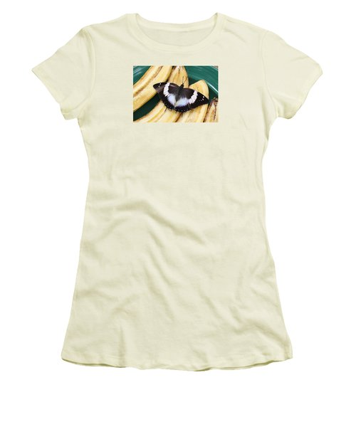 Violet-spotted Charaxes Butterfly Women's T-Shirt (Athletic Fit)