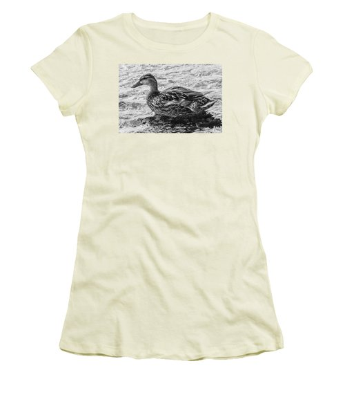 Wading Female Mallard Women's T-Shirt (Athletic Fit)