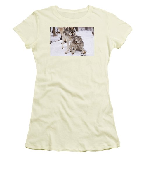 Women's T-Shirt (Junior Cut) featuring the photograph Who's The Boss by Wolves Only