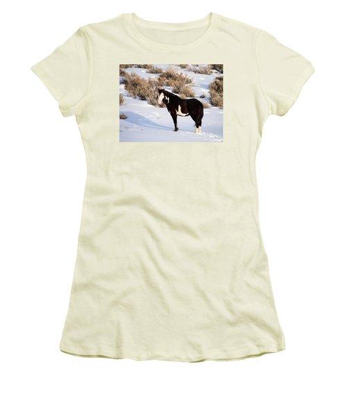 Wild Horse Stallion Women's T-Shirt (Junior Cut) by Nadja Rider